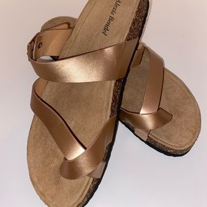 Alexis Bendel Rose Gold Sandals